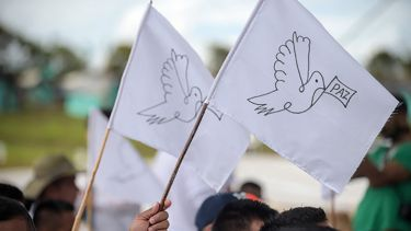 Doves of peace flag