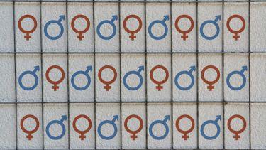 Gender, sexism, equality