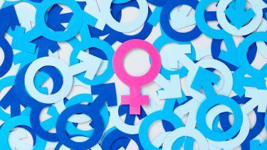 Female symbol over male symbols