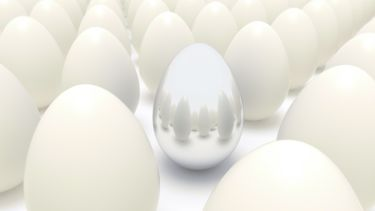 Silver Egg Among Plain Eggs