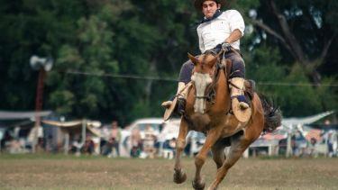Man riding wild horse