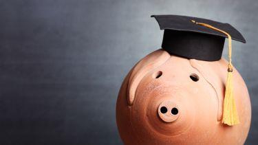 Piggy bank at university