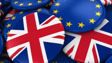 Pile of European Union (EU) and United Kingdom (UK) flag badges