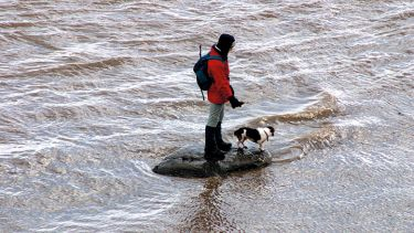man and dog stranded on a rock in a river