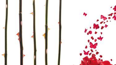 Thorns and butterflies