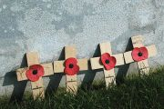 First World War (WW1) memorial crosses and poppies