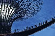 People on Supertree suspension bridge, Garden by the Bay, Singapore