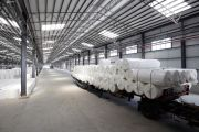 Rolls of paper loaded at paper mill