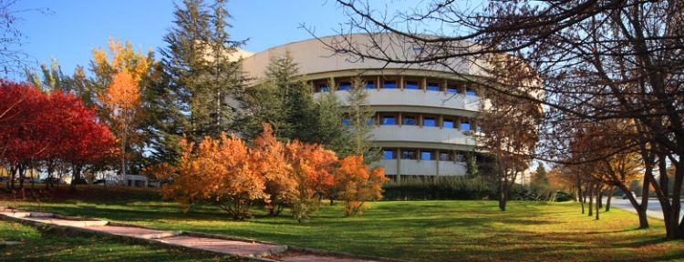 Stanford University?