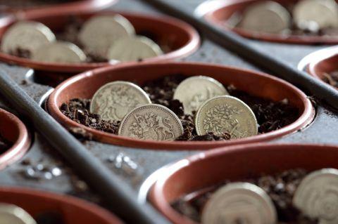Funding pots growing money