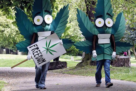Two people dressed as cannabis leaves