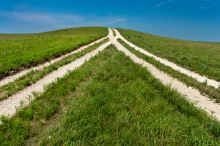 Two tracks in a field merge into one, illustrating mergers