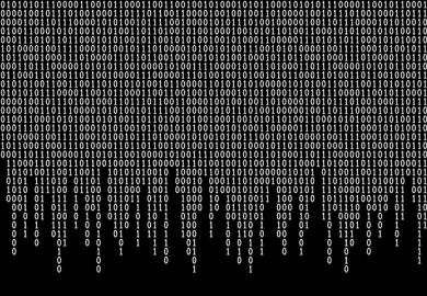 Binary code symbolising the dichotomy between REF and TEF