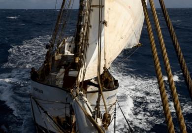 De Beukelaer's ship