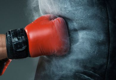 Boxer's fist punching heavy bag