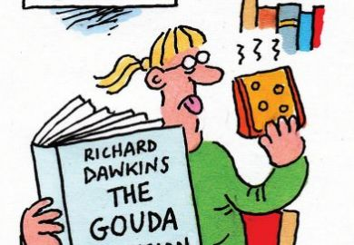 the gouda delusion