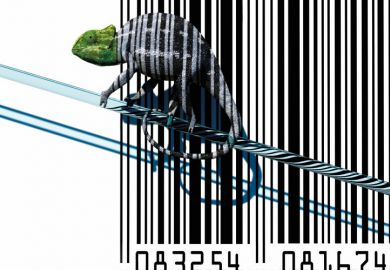 Chameleon sitting on barcode