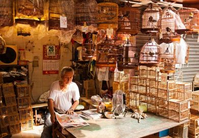 Chinese man in shop with cages