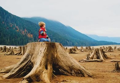 Boy kneels on tree stump