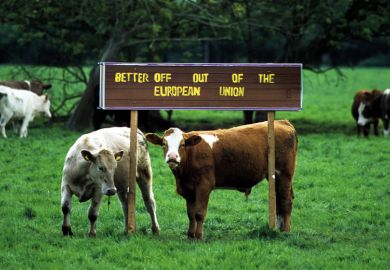 Cows in a field with a signpost saying 'better off out of the European Union'
