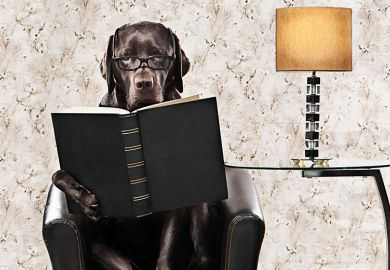 dog book lamp