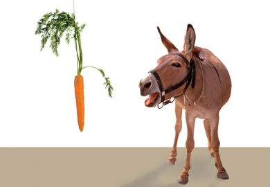 Donkey being led by carrot