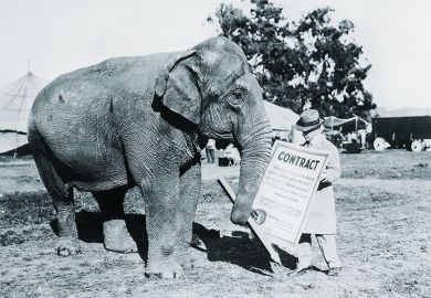 Circus elephant with contract