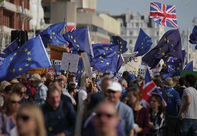 eu-flags-protest