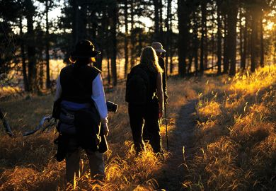 People walking through a wood at sunset illustrating fieldwork