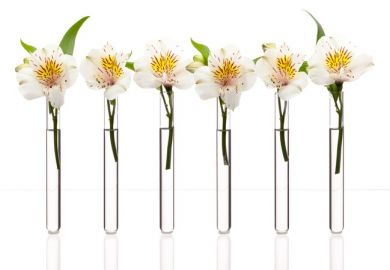 Flowers in a test tube