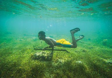 Boy hunting underwater