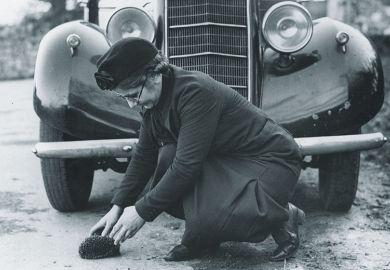 Woman saving hedgehog