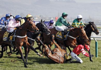 Horse and jockey fall during race