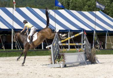 Horse misses jump
