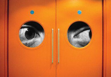 Huge eyes peering through door windows