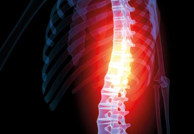Illustration of person's spine highlighted