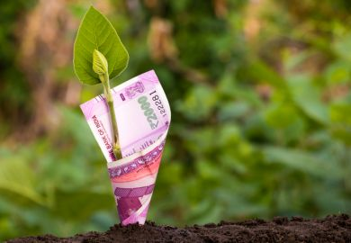 A green shoot with an Indian banknote wrapped around it