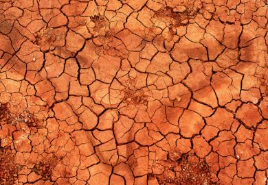 Patch of parched earth
