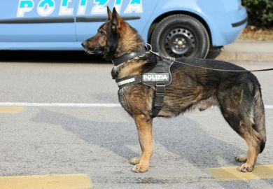police dog watchdog polizia