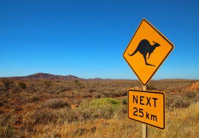 Kangeroo road sign in Australia
