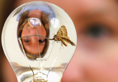 Woman's reflection and a moth in a light bulb illustrating female ideas and women philosophers