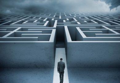 Man entering maze