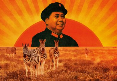 Mao Zedong portrait/Herd of zebra grazing on African plain