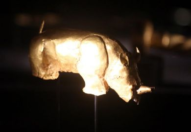 The Mapungubwe Rhino