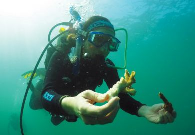 Marine biologist scuba diving and working underwater