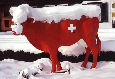 Model of a Swiss cow