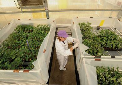 monsanto-vegetable-research-facility