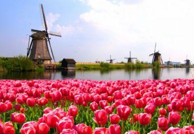 Netherlands, graduate employability, university