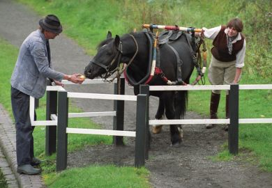 People using apple to coax horse through gate