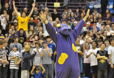 Weirdest US College mascots